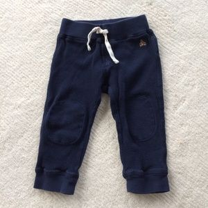 GAP baby boy blue cotton waffle knit jogger pants